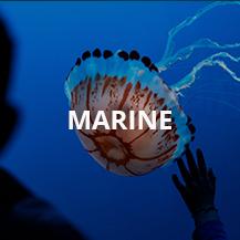 Marine Series (IP68)